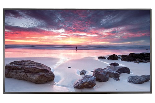 "LG 65"" 500 nits 4K Ultra HD IPS Display 65UH5C-B"